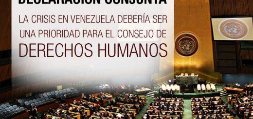 Declaración conjunta - La crisis en Venezuela debería ser una prioridad para el Consejo de Derechos Humanos
